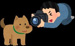 アミノフルワンPresents 愛犬無料撮影会への参加方法4月分