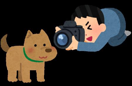 第2回アミノフルワンPresents 愛犬無料撮影会への参加方法10月分